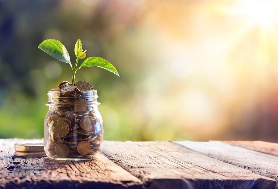 bigstock-Plant-Growing-In-Savings-Coins-118855964.jpg